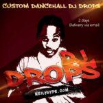 reggae danchall jamaican dj drops image